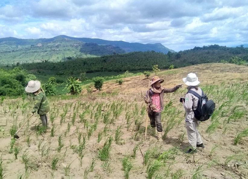 243 NPA Vietnam completes NTS in Quang Tri province 062020 Cu Dun village